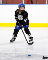 Youth Hockey/ North Shore VS Ice Breakers March 3, 2018
